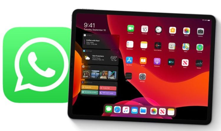 iPad will be able to use WhatsApp